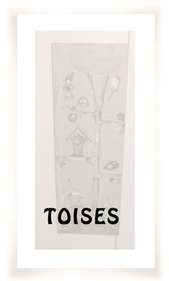Toise