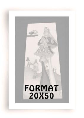 Formatr 20x50