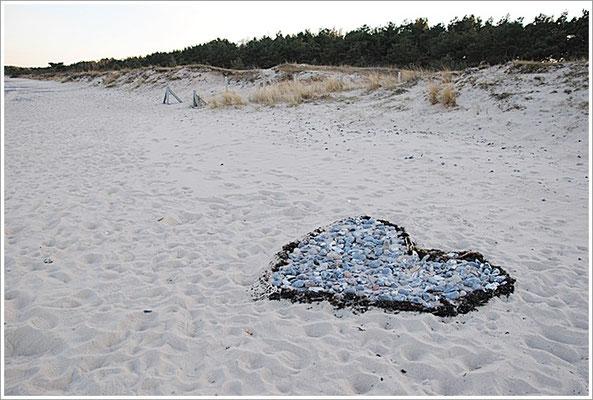 Strand - Neu Mukran/Prora