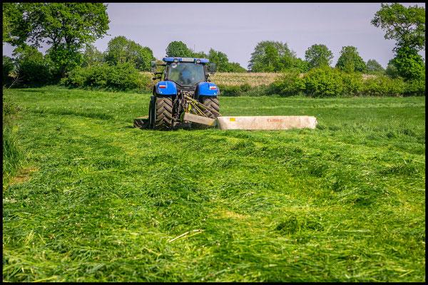 Traktor mit Front- & Heckmähwerk