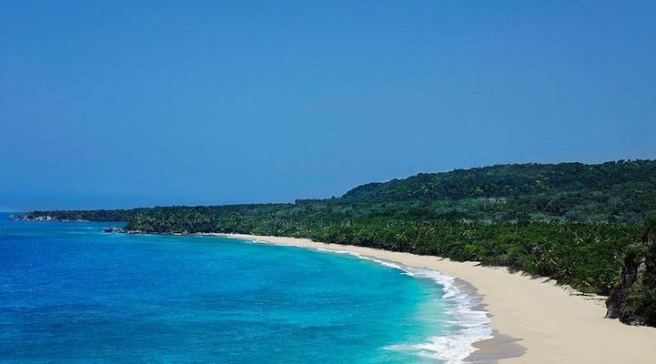 Meer, Strand und Dschungel