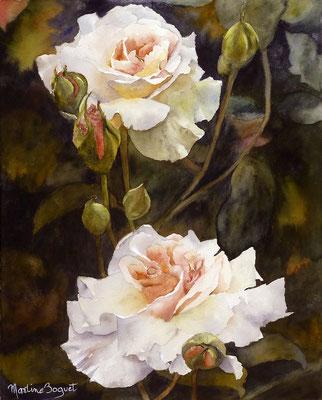 Deux roses blanches - 40x50 cm  -  300€