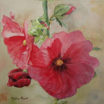 Rose trémière - 30x30 cm  -  150€