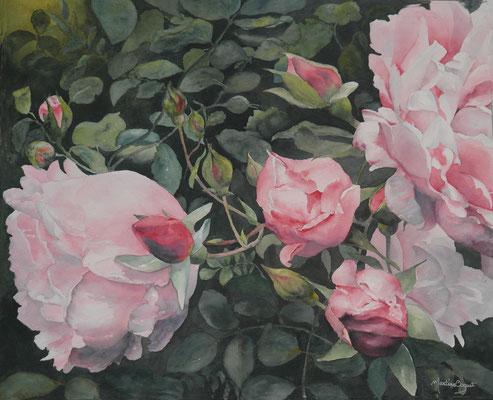 Roses du jardin - 54x65 cm  - 300€