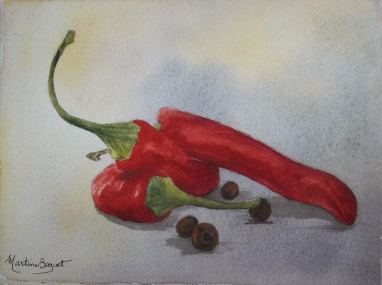 Piments et poivre - 13x 18 cm  -  25€