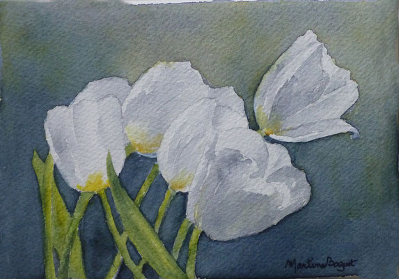 Tulipes blanches - 13x 18 cm  -  25€