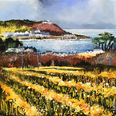IOS23 Daffodils, St. Marys sold print available