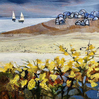 IOS31 St. Agnes Gorse  gallery commission      print available
