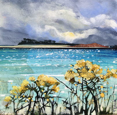 Scilly Gorse 2 sold print available