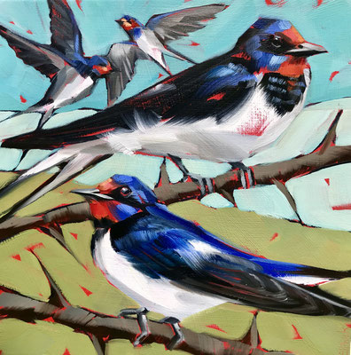 """BO20 Four Swallows 11""""square inc. frame £175 print available"""