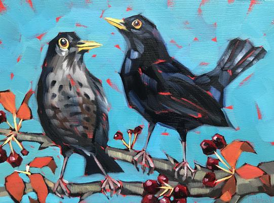 """BO30 Mr & Mrs Blackbird 9""""x11"""" +frame £175"""