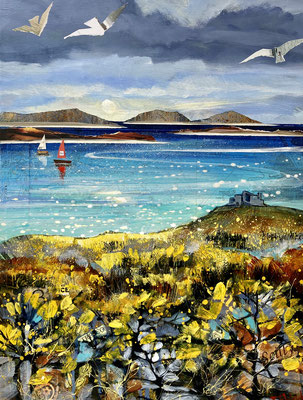 IOS35 Gorse on Beacon Hill, Tresco SOLD    print available