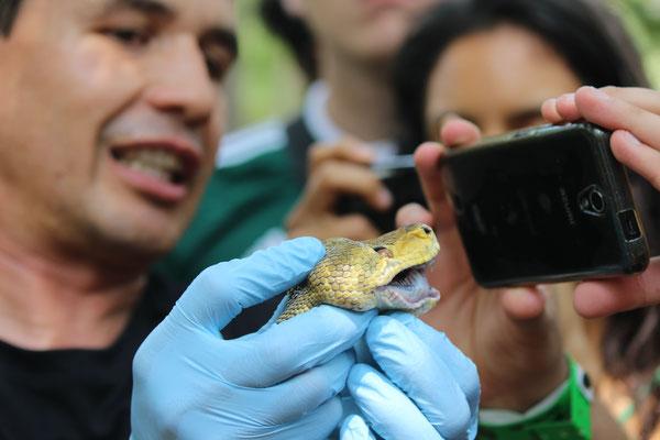 Curso de Manejo de Fauna en Piscilago (Cundinamarca). Marzo 2016