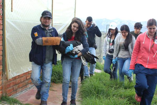 Curso de Manejo de Fauna en Boyacá. Junio 2016