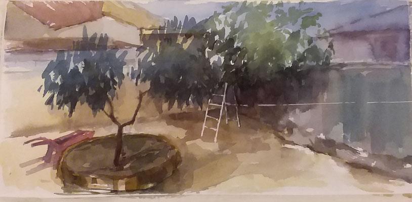 """"""" El corral de Pili y Alejandro """" 40x20"""