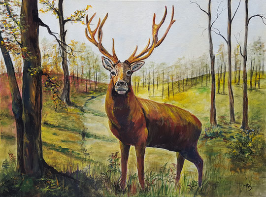 36 Forêt habitée - acrylic 60x81