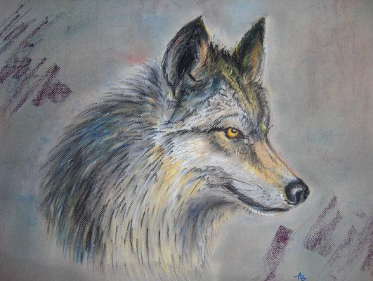 Wolf (pastel)