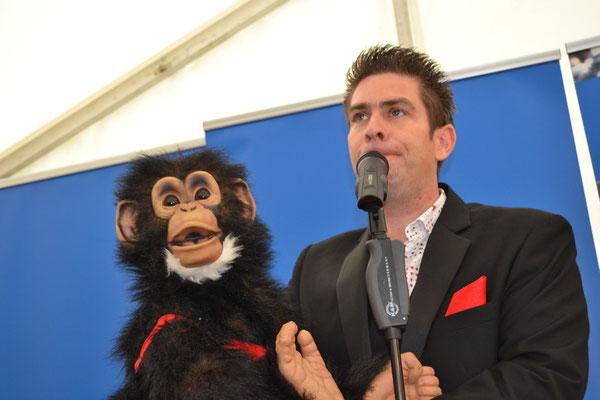 Schimpanse Rolf der Techniker