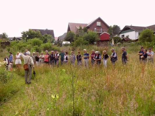 Gästegruppe und Hochstaudenflur, vor den Häusern westlich der Projektfläche