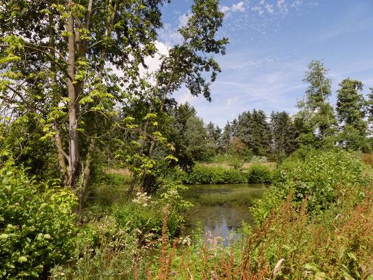 Der obere Teich