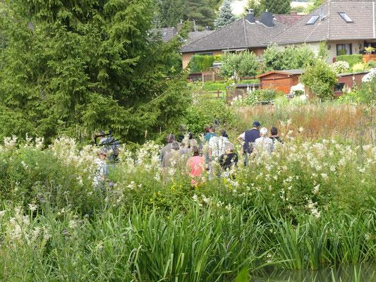 Die Gäste bei der Führung (Unterer Teich, Hochstauden, im Hintergrund Häuser östlich der Hamel; dies zeigt, dass die Projektfläche in die Ortslage eingreift.)