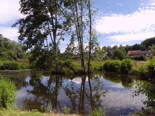 Der obere, große Teich