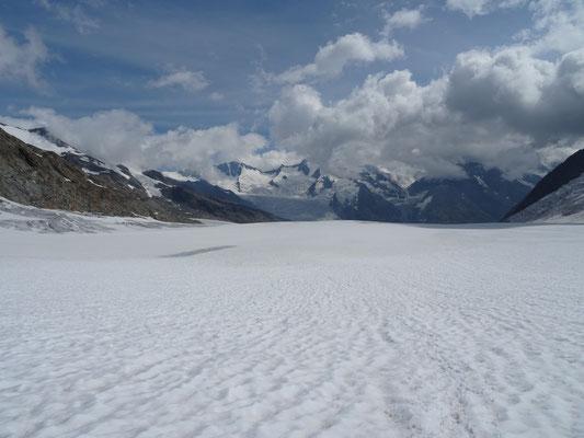 Sur le glacier Grosser Aletschfirn