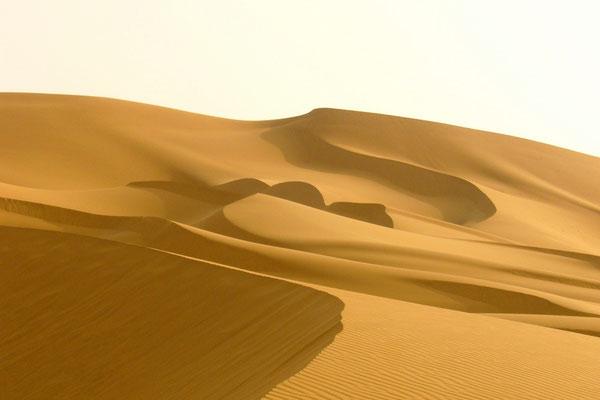 Sahara-désert humain