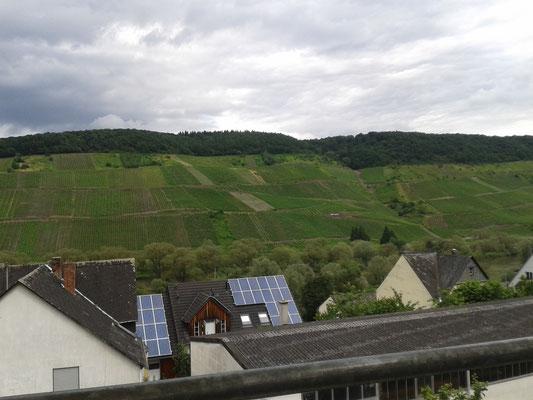 Blick vom Hotel auf die Weinberge der Mosel