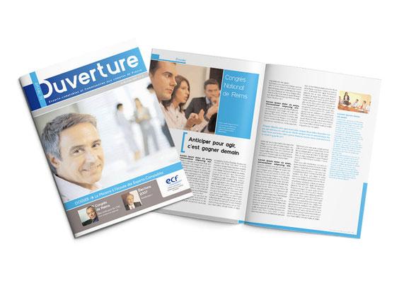 Brochure - Experts Comptables et Commissaires aux Comptes de France