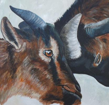 Ziegenpaar (40x40 cm)