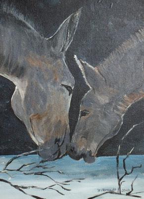 Eselei (30x20 cm)