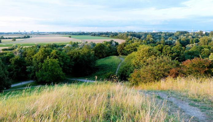 Blick vom Michaelsberg Richtung Oggersheim