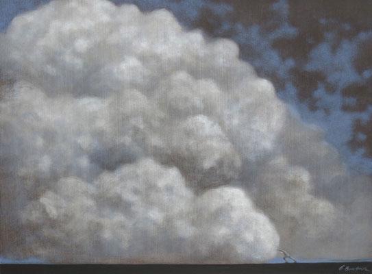 Thomas Bossard, artiste peintre, Infiniment petit, huile sur toile, 130 x 97 cm