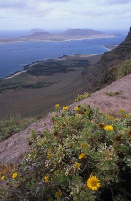 Die kleine Insel La Graciosa liegt nördlich von Lanzarote (Kanarische Inseln) [UKR20000328_La_]