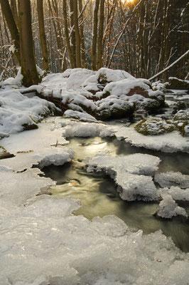 Frost und Schnee im Odenwald [UKR20110130_0120]