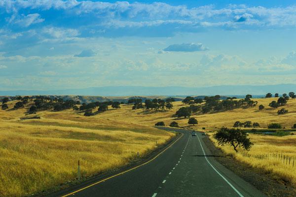 Fahrt ins Sonoma Valley