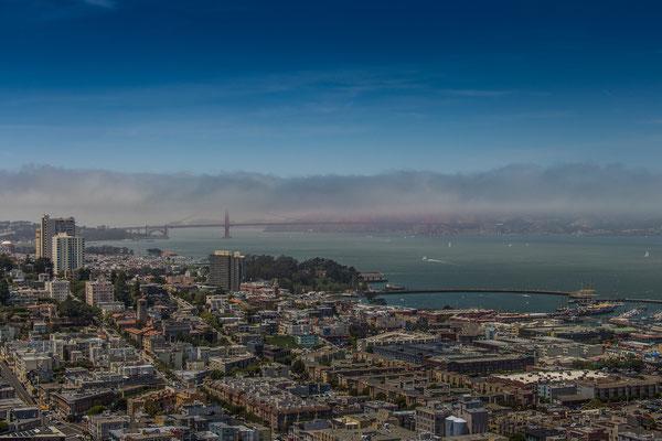 Blick vom Coit Tower auf San Francisco und die Golden Gate Bridge im Nebel