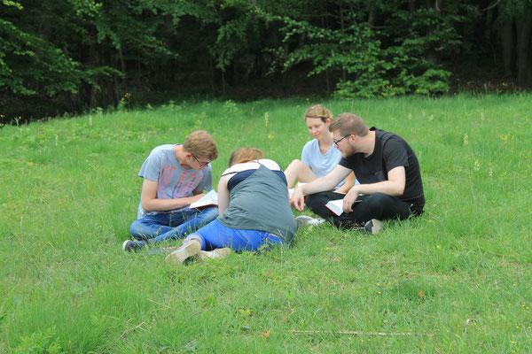 Parallel zur Arbeit mit dem Datenlogger versuchten sich andere Arbeitsgruppen an einer kleinen Kartierung der Orchideen auf einer der Freiflächen.