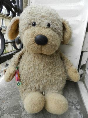 Réparation d'ours et animaux en peluche contemporains