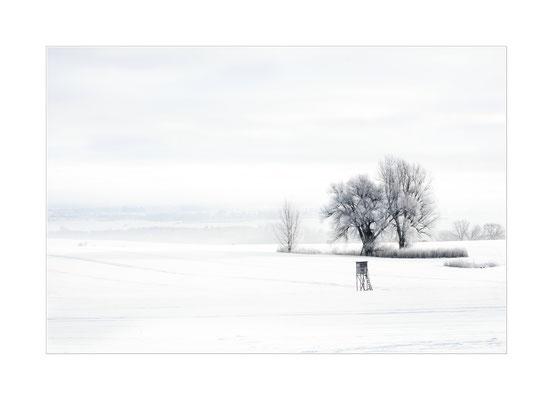 Winterland  3