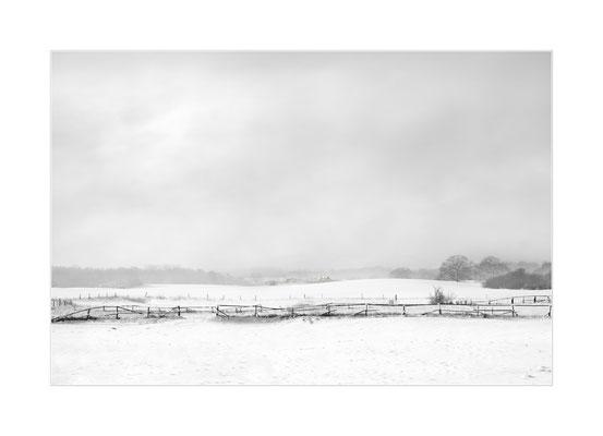 Winterland  13