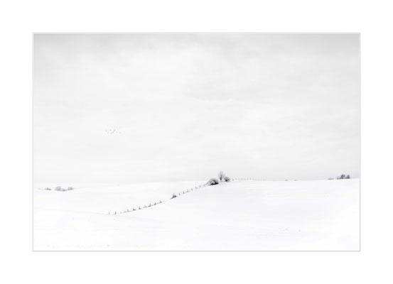 Winterland  7