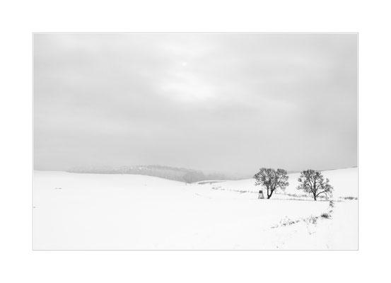 Winterland 20