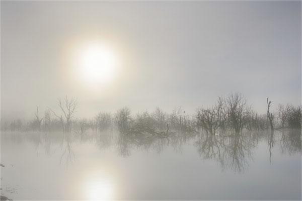 am Galenbecker See