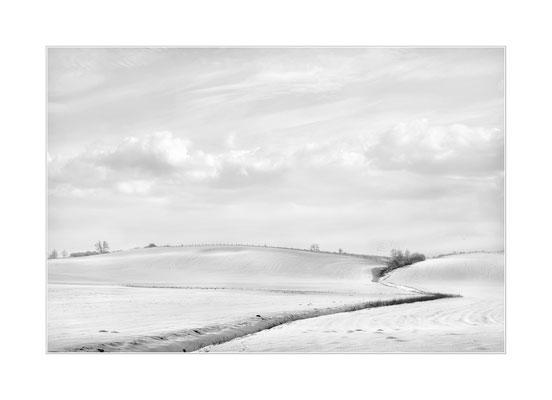 Winterland  15