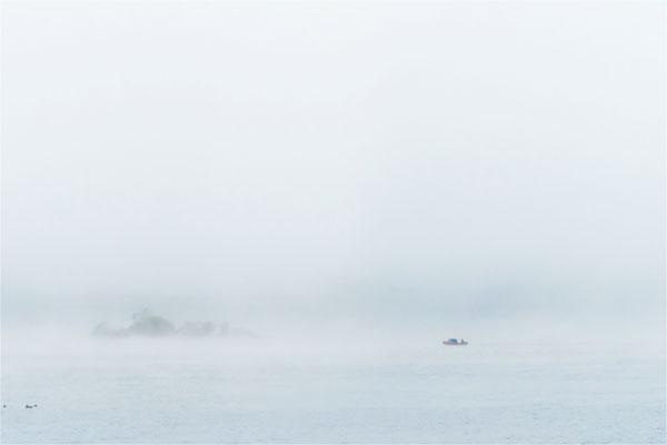 Seenebel über dem Tollensesee