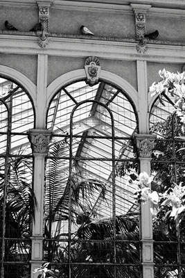architecture noir et blanc vitres fenêtres architecte photographe nantes loire-atlantique pays de la loire