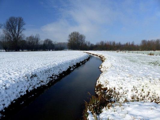 Feb. 2015, Foto: Franz Miertz