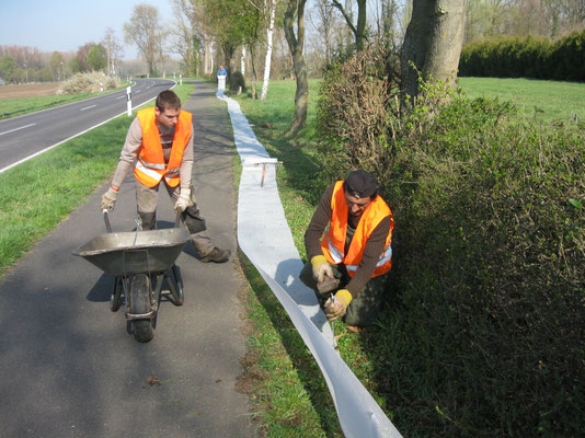 Die hauptamtlichen Naturschützer Heino, Sülhattin, Ludwig und Michael in Aktion.